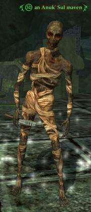 An Anuk' Sul maven
