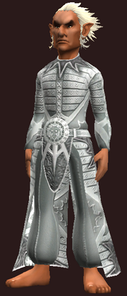 Elementalist's Robe of the Citadel (Equipped)