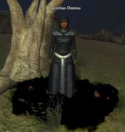 Lucretias Domna