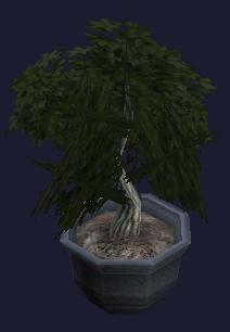 File:A harmonious bonsai (visible).jpg