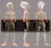 Animist's Cuffs of the Citadel (Equipped)