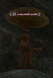 A myconid zealot
