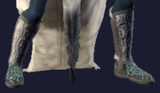 Eidolonic Boots (Equipped)