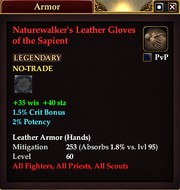 Naturewalker's Leather Gloves of the Sapient