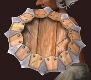 Round Shield of Malformed Werewolf Bones (Equipped)