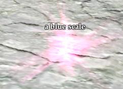 A blue scale
