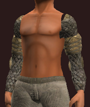 Woodland Protector's Shoulder Pads (Equipped)