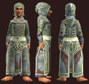 Thaumaturge's Robe (Equipped)