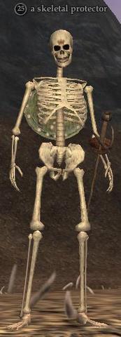 File:Skeletal protector.jpg