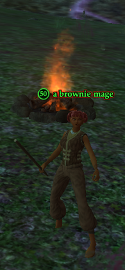 A brownie mage