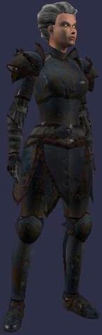File:Silvered Armor of Lord Everling (set).jpg