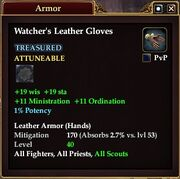 Watcher's Leather Gloves