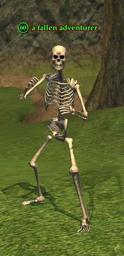 A fallen adventurer