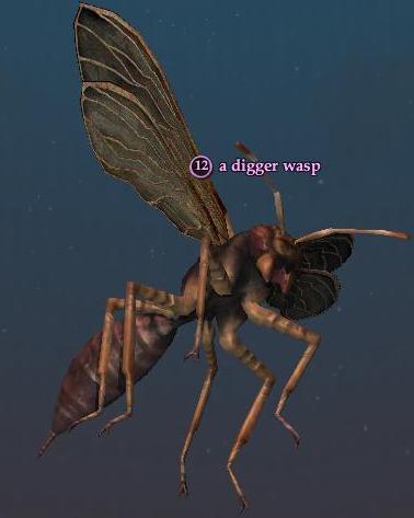 File:Digger wasp.jpg