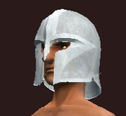 Knight's Helmet of the Warleader (Equipped)
