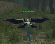 An Asilian diviner
