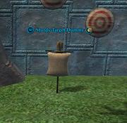A Sturdy Target Dummy