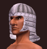 Forest Stalker's Coif of the Citadel (Equipped)