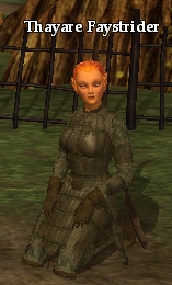File:Thayare Faystrider.png