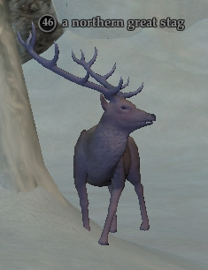 File:Northern great stag.jpg
