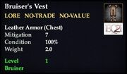 Bruiser's Vest