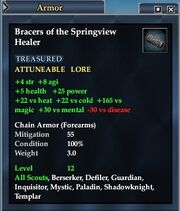 Bracers of the Springview Healer