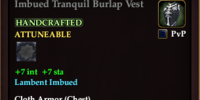 Imbued Tranquil Burlap Vest