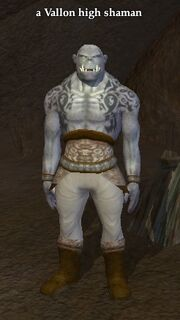 A Vallon high shaman