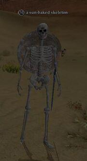 A sun-baked skeleton
