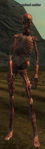 An undead settler
