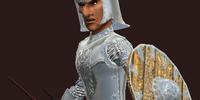 Shimmering Star (Armor Set)