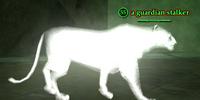 A guardian stalker (solo)