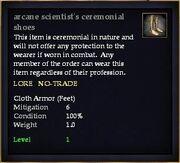 Arcane scientist's ceremonial shoes