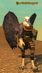 A Blacktalon guard