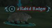 A Rabid Badger