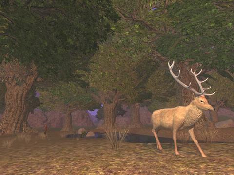 File:Archer's Woods.jpg