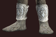 Preserver's Cured Leather Boots (Equipped)