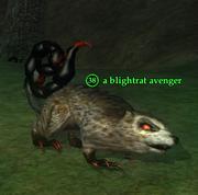 A blightrat avenger