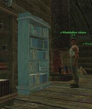 Windstalkerbookcase