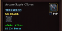 Arcane Sage's Gloves
