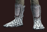 Arcane Sage's Shoes (Equipped)
