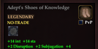 Adept's Shoes of Knowledge