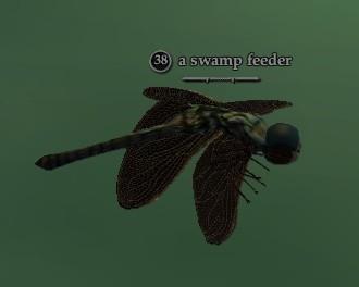 File:Swamp feeder.jpg