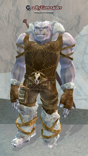 A Ry'Gorr raider