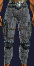 File:Leggings of Nature's Glory (equipped).png