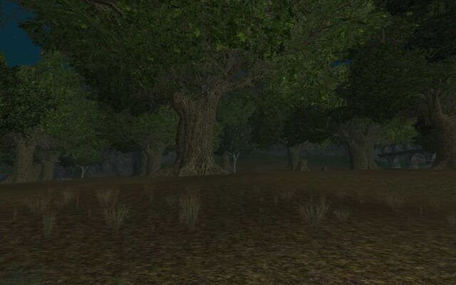 File:Glade of the Coven.jpg