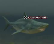 A razortooth shark