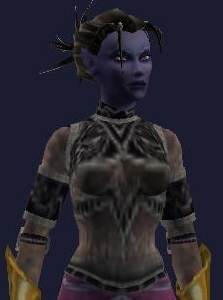 File:Kithicor's Nighthunter Shoulderpads (Visible).jpg