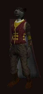 Heroes-festival-minstrel-coat