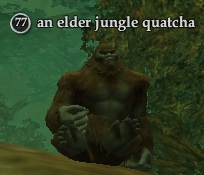 File:An elder jungle quatcha.jpg